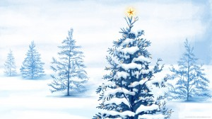 natural-christmas-tree-with-star
